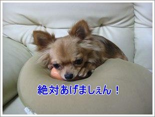 Hotdog4