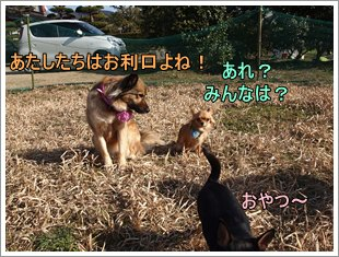 Run24_2