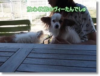 Yoka46_2