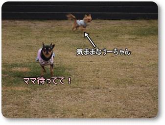 Run5_2
