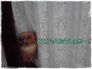 Kinenbi4