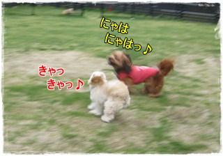 Run4_3