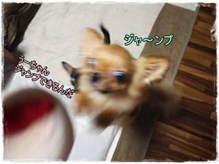 Sawakiti5
