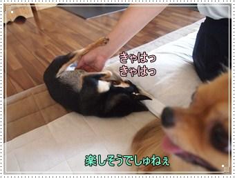 Mei5_2