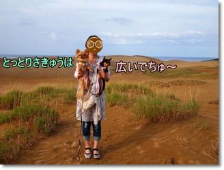 Sakyu5