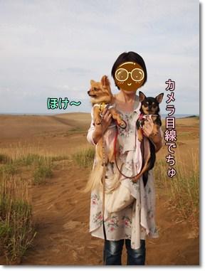 Sakyu6