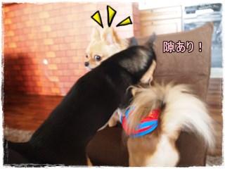 Woomei2