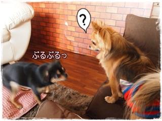 Woomei_2