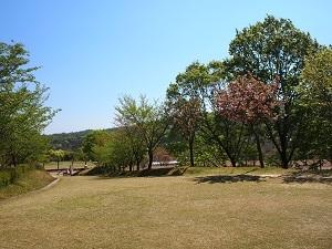 Park1_20200430201801